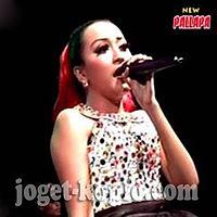 Nyi Roro Kidul - Elsa Safira - New Pallapa live Temu Prambon 2014  joget-koplo.com.mp3