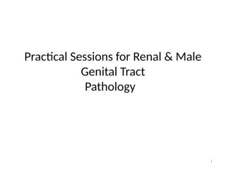 Practical Session for Renal & MGS .ppt